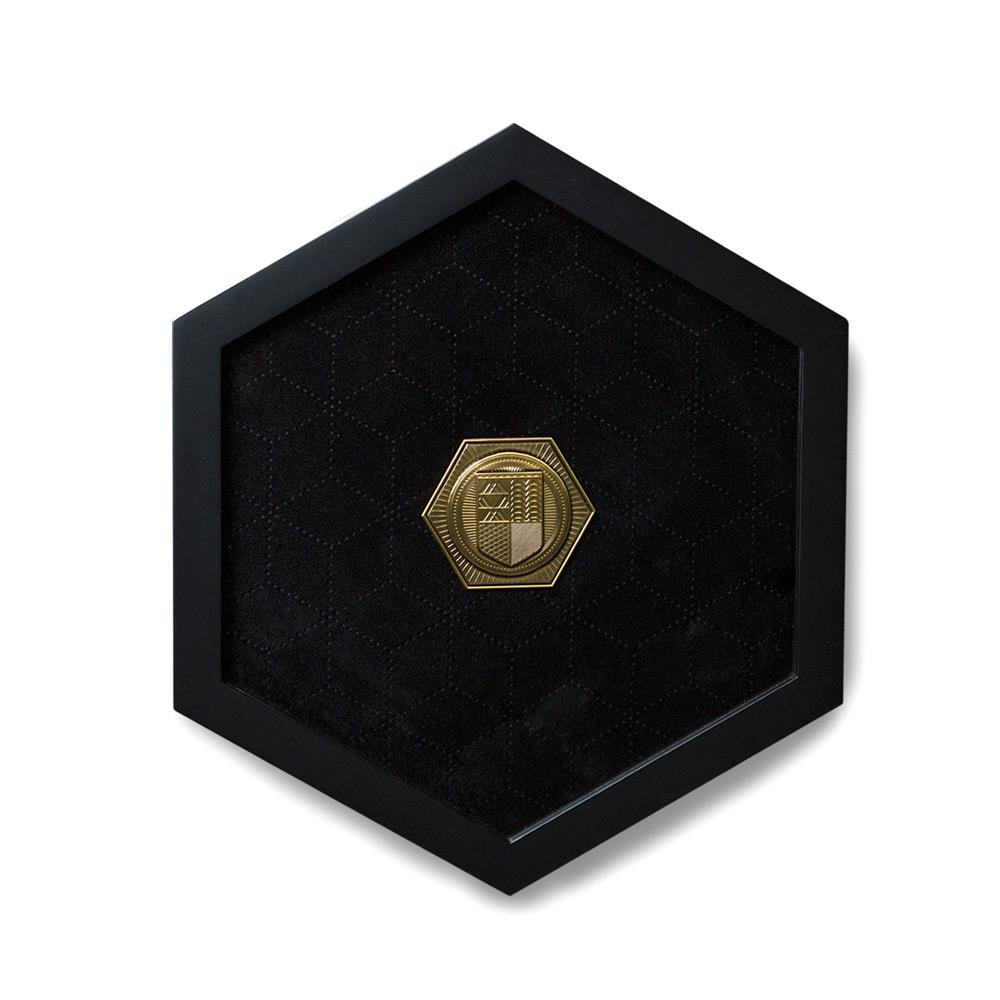 Premium Wooden Pin Display With Exclusive Pin
